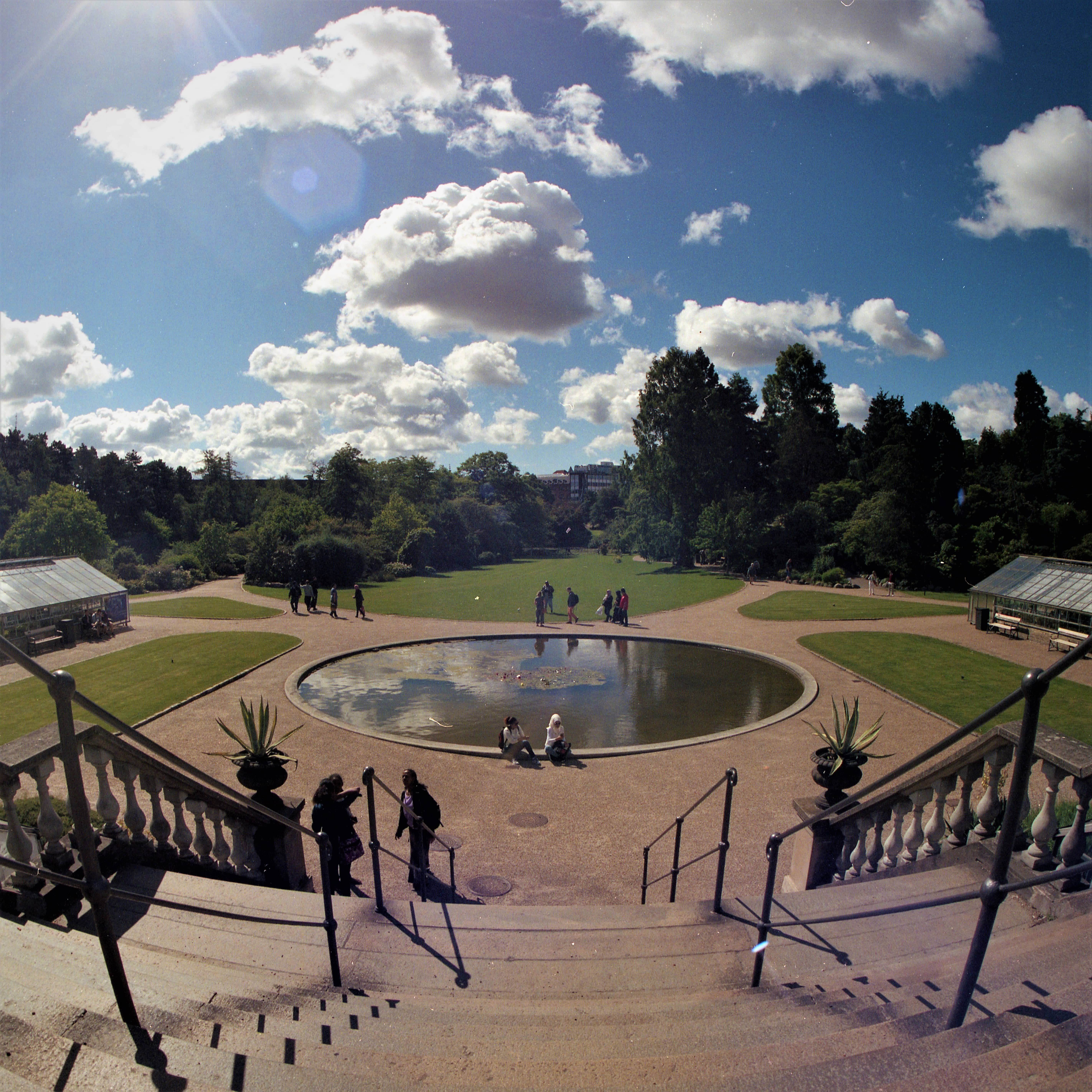 portra400005-min docular Kopenhagen botanische tuin