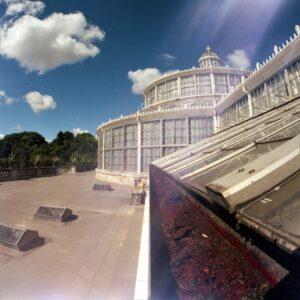 portra400008-min docular Kopenhagen botanische tuin
